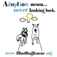 Adoption Means