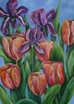 Pink tulips and purple irises