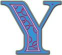 Y Names