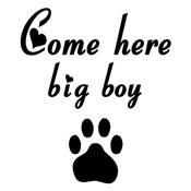 Cougar Saying: Come Here Big Boy