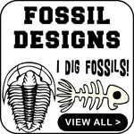 Fossil T-Shirt Fossil T-Shirts Gift