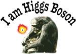 I am Higgs Boson