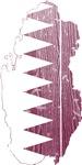 Qatar Flag And Map