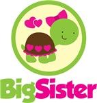 Turtle Big Sister
