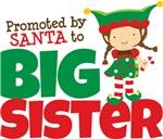 Elf Big Sister To Be
