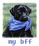 Yuppy Puppy, my bff