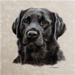 Dickens, Black Labrador
