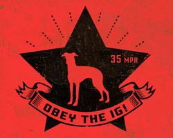 Icon of IG Revolution
