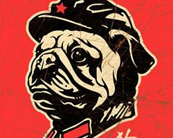 Chairman Pug