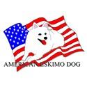 American Eskimo USA