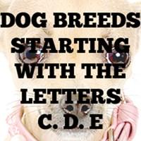 Dog Breed T-Shirts C - E