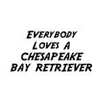 Everybody Loves A Chesapeake Bay Retriever