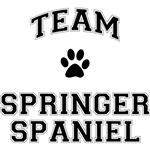 Team Welsh Springer Spaniel