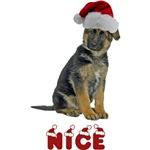 Nice German Shepherd Puppy