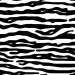 Zebra Animal Print Black White Stripes