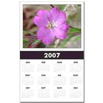 ...Wild Flower 06...