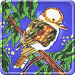 Kookaburra T-shirts and Gifts.