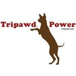 Tripawd Power (Jerry)