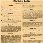 Bill of Rights Tshirts