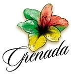 Grenada hibiscus
