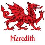 Meredith Welsh Dragon