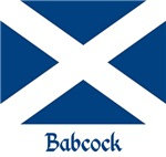 Babcock St. Andrew's Flag