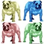 4 Color Bulldog