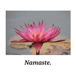 Namaste Blessings