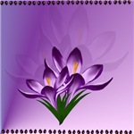 Flowers,Plants,Spring,Butteflies