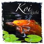 Koi & Pond