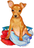 Min Pin Drawings by Michelle McIntyre