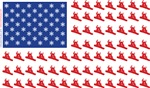 Snowboarder in Made in The American Flag