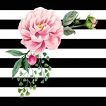 Pink Floral Black White Stripes