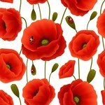 Red Poppies & Ladybugs
