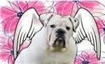 Winged Bulldog