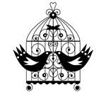 Black/White Birdcage Lovebirds