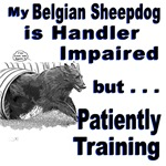 Belgian Sheepdog Agility