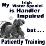 Irish Water Spaniel Agility