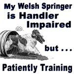Welsh Springer Spaniel Agility