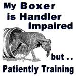 Boxer Agility