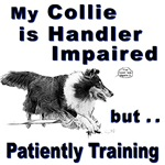 Collie Agility