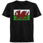 Welsh Flag Wearables