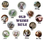 Old Weims Rule!