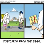 Postcards From The Eggs