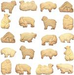 Animal Cracker Kids