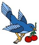 Bluebird with Cherries