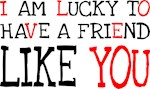 I am lucky to have a friend like you