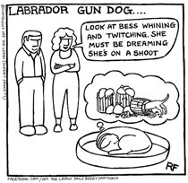 Gun Dog Dream