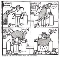Poppy The Lapdog...