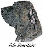 Fila Brasileiro - 13 IMAGES - COLOR AVAILABLE
